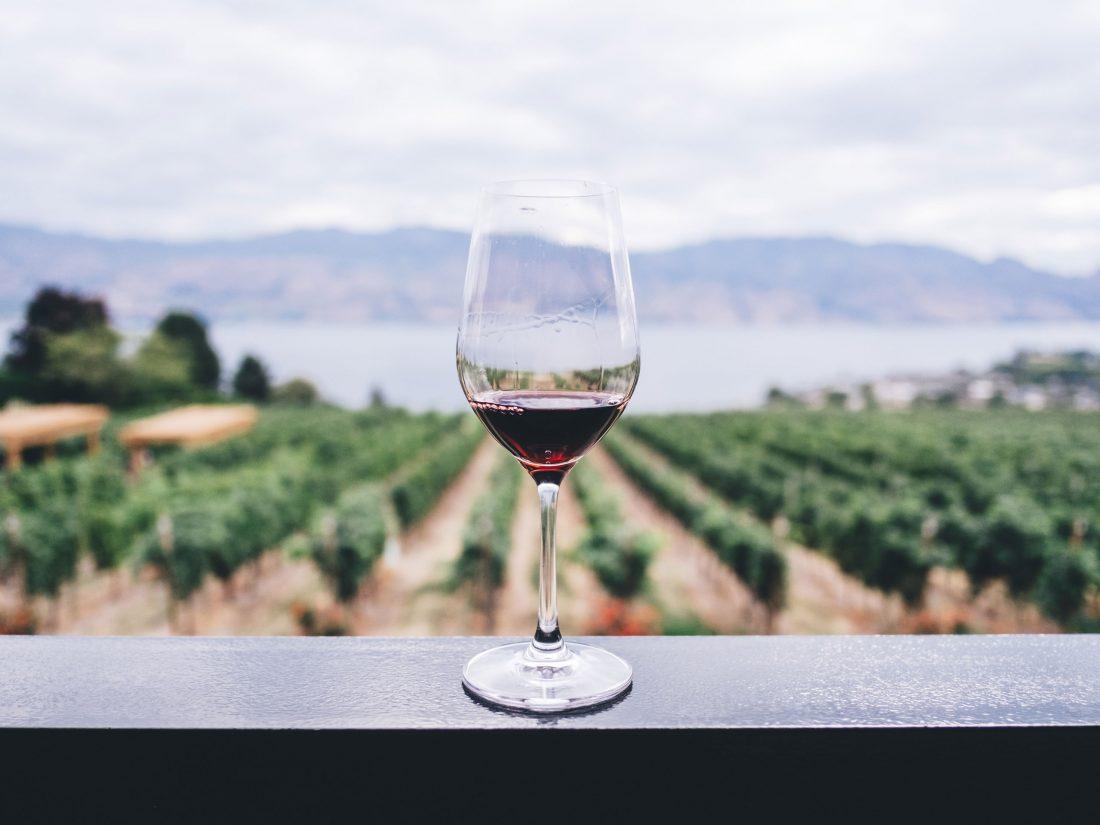 Gran variedad de tours premium en Rioja